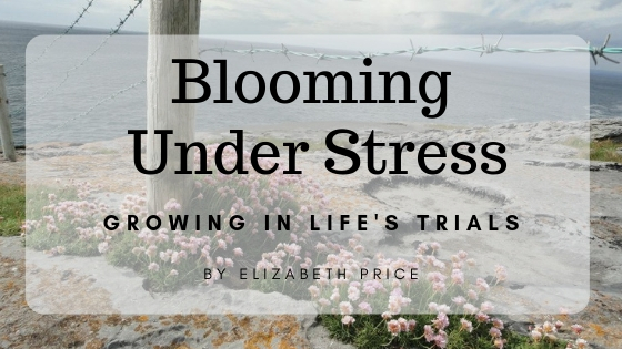 Blooming Under Stress Growing in LIfe's Trails